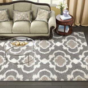 Reviews Hegwood Shag Gray Area Rug By Andover Mills