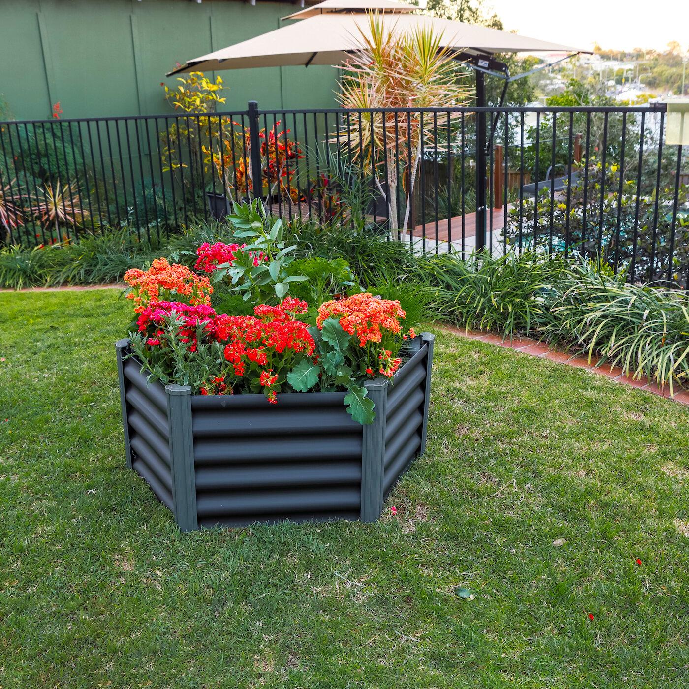 The Organic Garden Co Hexagonal 1 5 Ft X 3 Ft Galvanized Steel Raised Garden Wayfair