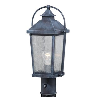 Goldie Outdoor 1-Light 18