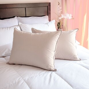 Nikki Chu Down and Feathers Pillow