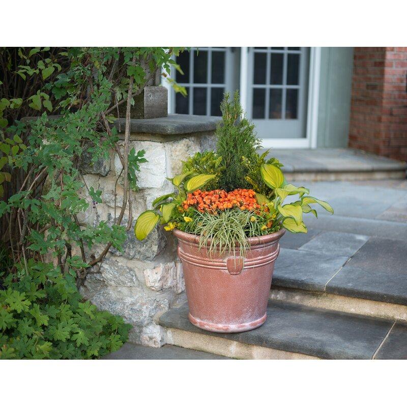 Suncast Waterton Resin Pot Planter Reviews Wayfair