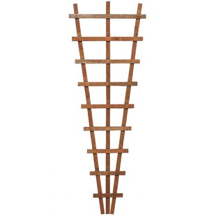 Mahia Wood Fan Trellis (Set Of 3) By Sol 72 Outdoor