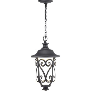 Metzger 1-Light LED Outdoor Pendant