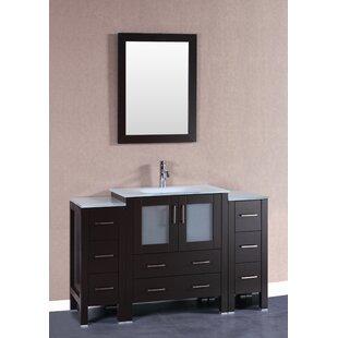 Loney 54 Single Bathroom Vanity Set with Mirror ByBreakwater Bay