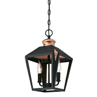 Darby Home Co Ibarra 2-Light Foyer Pendant