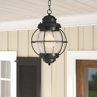 Beachcrest Home Cason 1-Light Outdoor Hanging Lantern