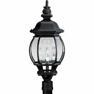 Best Price Triplehorn 3-Light Antique Lantern Head in Black By Alcott Hill