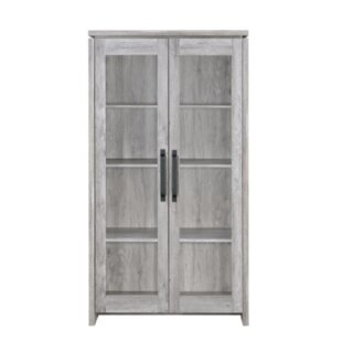 Old West 2 Door Accent Cabinet by Loon Peak