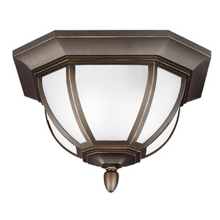 Teri 2-Light Outdoor Flush Mount By Fleur De Lis Living Outdoor Lighting
