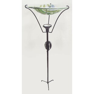Continental Art Center Dragonfly Solar and Lighted Birdbath