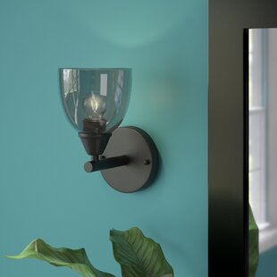 Palumbo 1-Light Bath Sconce by Brayden Studio