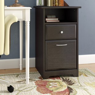 Red Barrel Studio Hillsdale 2-Drawer Vert..