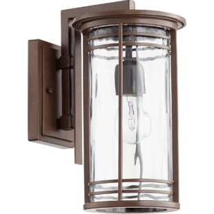 Millwood Pines Amethyst 1-Light Outdoor Wall Lantern