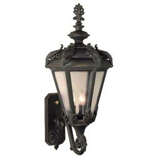 Alcott Hill Petrey 3-Light Outdoor Sconce