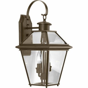 Best Choices Gunnora 2-Light Outdoor Wall Lantern By Darby Home Co