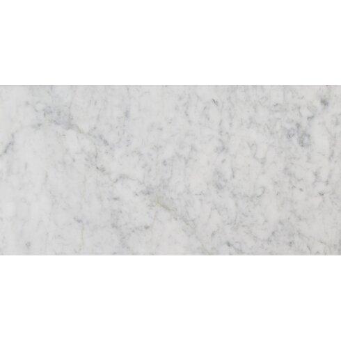 Msi 12 X 24 Marble Field Tile In Carrara White Wayfair
