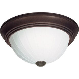 Joyner 2-Light Outdoor Flush Mount By Charlton Home Outdoor Lighting