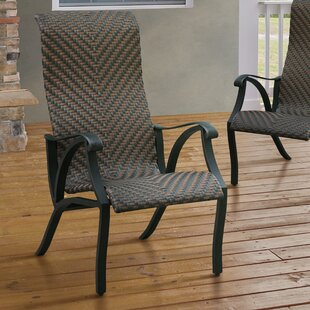Darby Home Co James Patio Dining Chair (Set of 2)