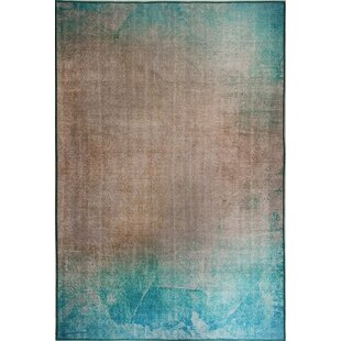 Read Reviews Brody Turquoise/Beige Area Rug By Ebern Designs