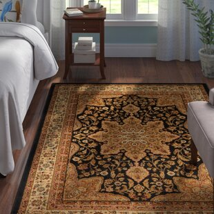 Affordable Price Blanche Black Area Rug By Andover Mills