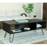 https://secure.img1-fg.wfcdn.com/im/67684487/resize-h160-w160%5Ecompr-r85/7149/71495051/Collection+4+Coffee+Table+with+Storage.jpg