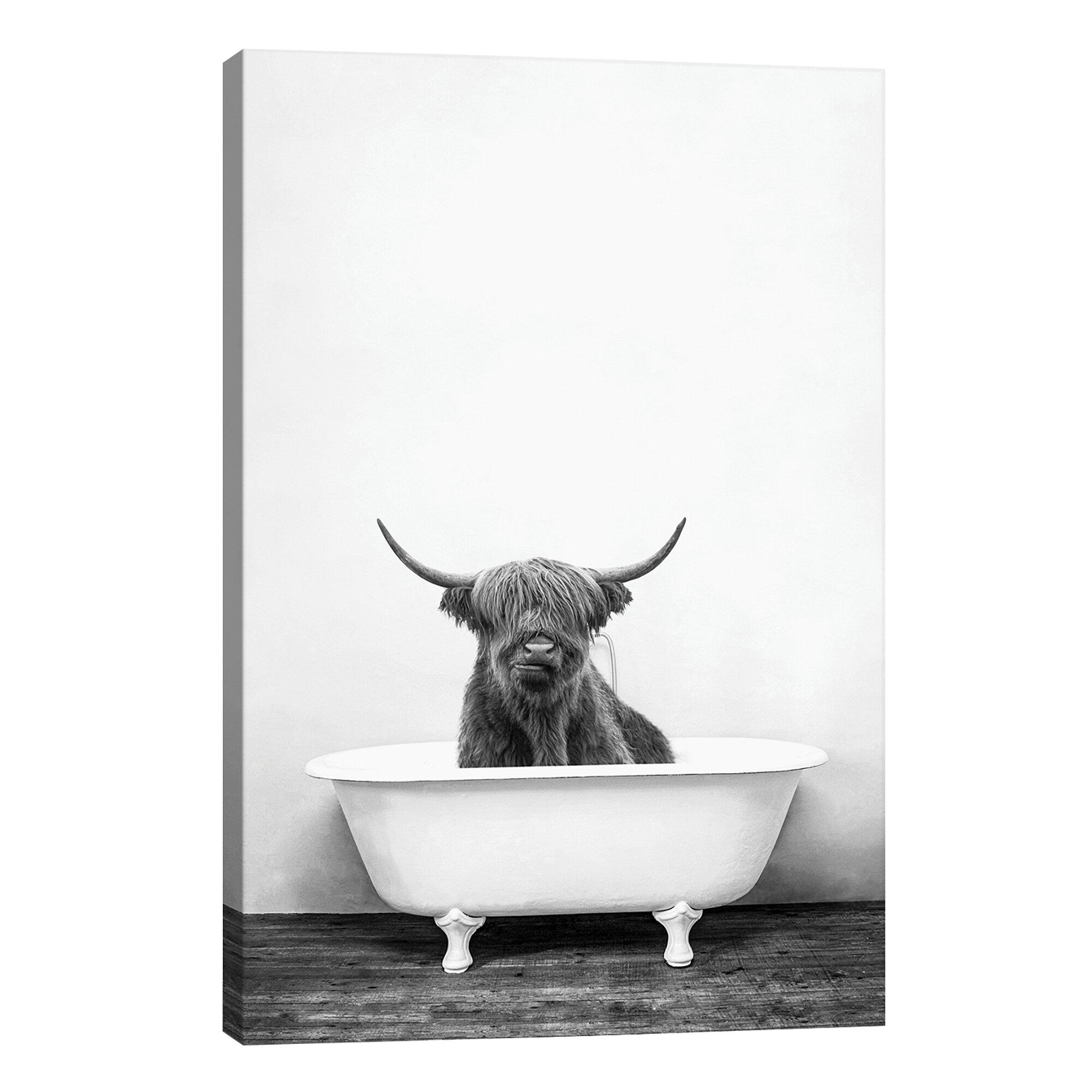 Bath Laundry Wall Art You Ll Love Wayfair Co Uk