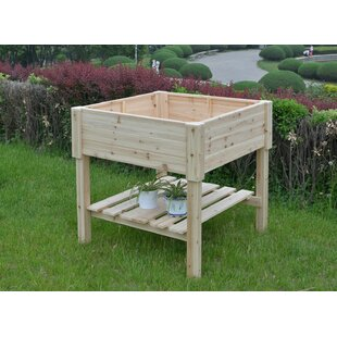 The Master Gardner Company Organic Wood Raised Garden