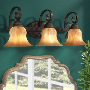 Gregory 3-Light Vanity Light By Three Posts