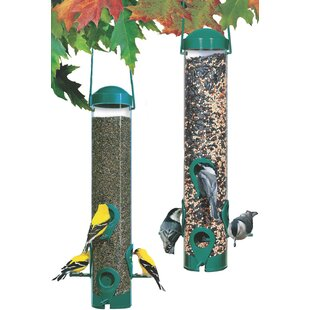 the p bird yellow finch feeders sided feeder straight no tube