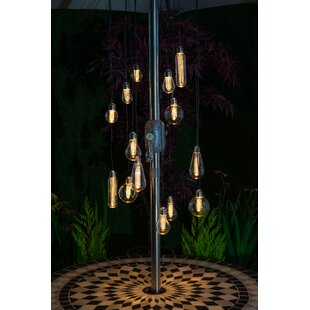 Bonanno 10 Light Outdoor Chandelier By Williston Forge