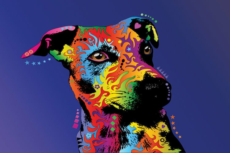 East Urban Home Rainbow Jack Russell Terrier Graphic Art On Wrapped Canvas Wayfair