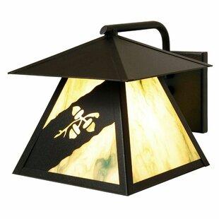 Steel Partners Acorn 1-Light Outdoor Wall Lantern