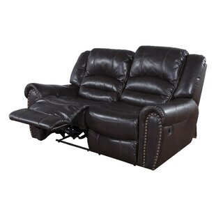 Olson Dual Reclining Loveseat by Red Barr..