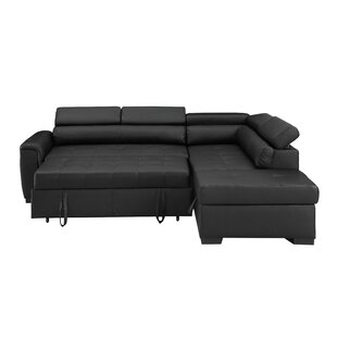 Find for Tramel Sleeper Sectional by Latitude Run Reviews (2019) & Buyer's Guide