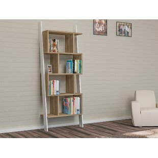 Canchola Leaning Ladder Bookcase By Ivy Bronx