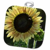 Sunflower Oven Mits Wayfair