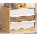 Hodder 2 Drawer Nightstand by Bungalow Rose