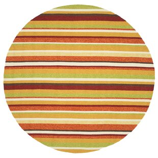 Danko Hand-Hooked Green/Red Indoor/Outdoor Area Rug