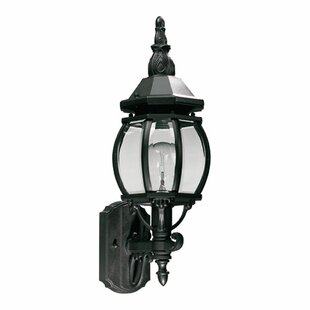 Beachcrest Home Mehar 1-Light Glass Shade Outdoor Sconce