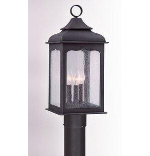 Theodore 3-Light 60W Metal Lantern Head by Darby Home Co