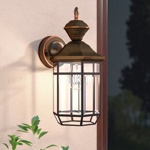 Alcott Hill Brookport 1-Light Outdoor Wall Lantern