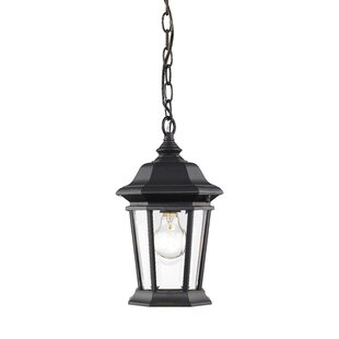 Bibb 1-Light Outdoor Hanging Lantern