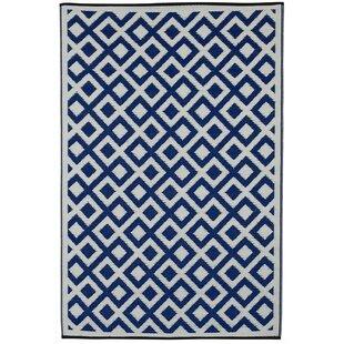 Briarwood Indigo/White Outdoor Rug Image