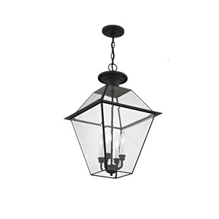 Orchard Lane 4-Light Outdoor Hanging Lantern