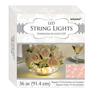 Amscan LED 18 Light Fairy String Lights