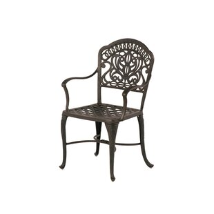 Merlyn Patio Dining Chair (Set of 2)