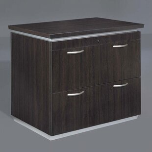 Pimlico 2-Drawer File