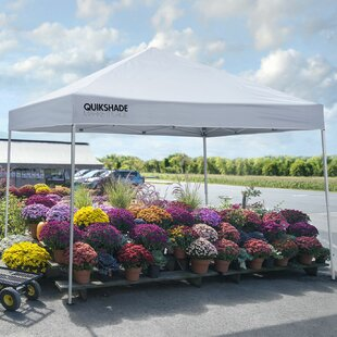 Marketplace 10 Ft. W x 10 Ft. D Metal Pop-Up Canopy by QuikShade