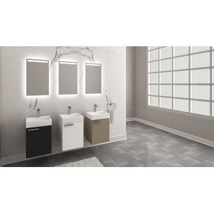 Dipasquale 16 Single Bathroom Vanity Set with Mirror