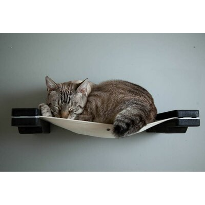 """18"""" Mod Cat Hammock Wall-mounted Perch Catastrophicreations Color: Onyx/black"""